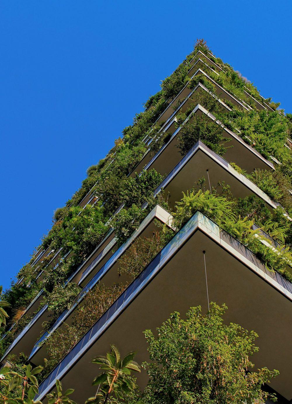 בנייה ירוקה – קווים לדמותה